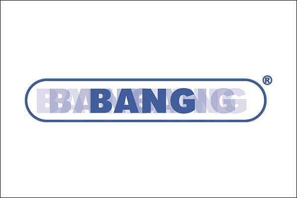 Logo des BANG Netzwerkes